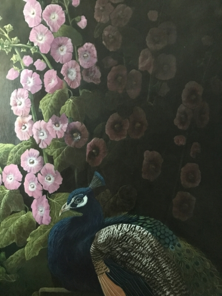 Blue Peacock with hollystocks