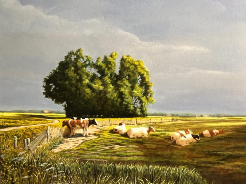 Polder landscape with cows Holy Vlaardingen Zuid-Holland