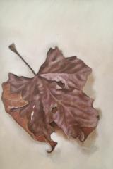 Herfstblad paars