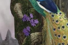 Groene Pauw in Anghcor